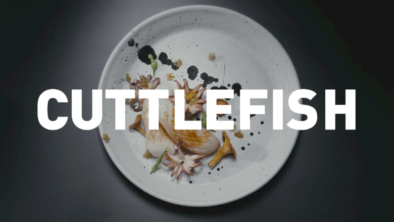 """Cuttlefish"""